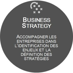 MAGNETTE BUSINESS STRATEGY